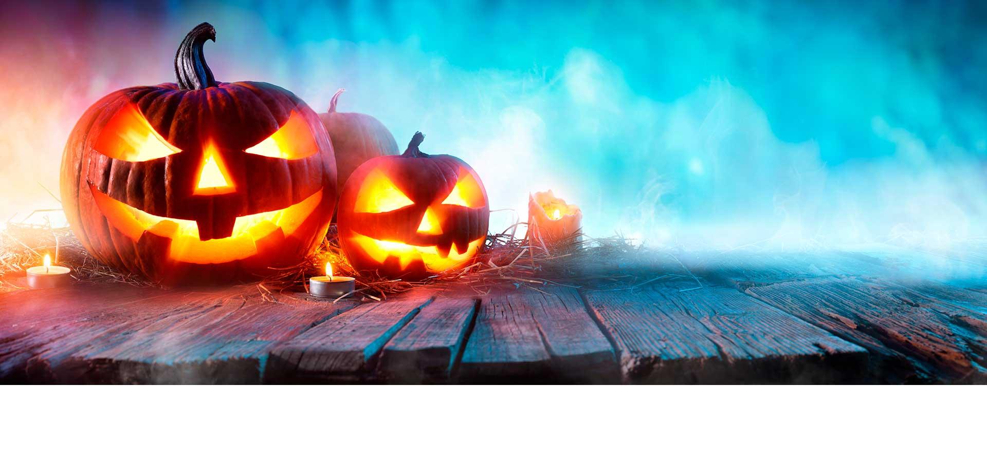 De mooiste pompoenen voor Halloween